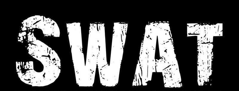 W.A.T. - Theme From S.W.A.T.